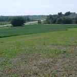 Участок и благоприятная почва