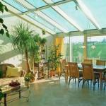 Создаем зимний сад у себя дома