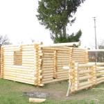 Фундаменты домов из дерева