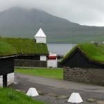 Выбор зеленной крыши