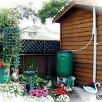 Отведение и использование дождевой воды