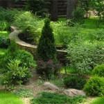 Ландшафтный дизайн во дворе