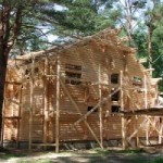 Постройка из дерева: за и против