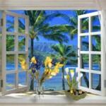 Окно в помещении — глаза в мир
