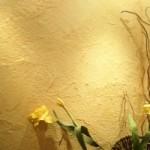 Венецианская штукатурка у Вас дома