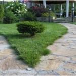 Как оформить дорожки возле дома и сделать гидроизоляцию лоджии?