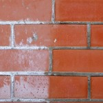 Не давайте шанса белому налету на стене
