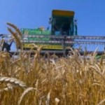 Защити свой урожай от непогоды