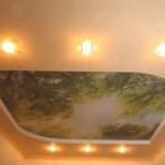 Какой потолок выбрать для ремонта помещения