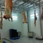 Что нужно для открытия мини завода по переработке мяса