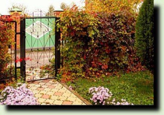 Как оживить безликий забор