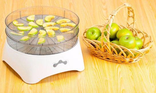 Выбираем качественную электросушилку для фруктов и овощей