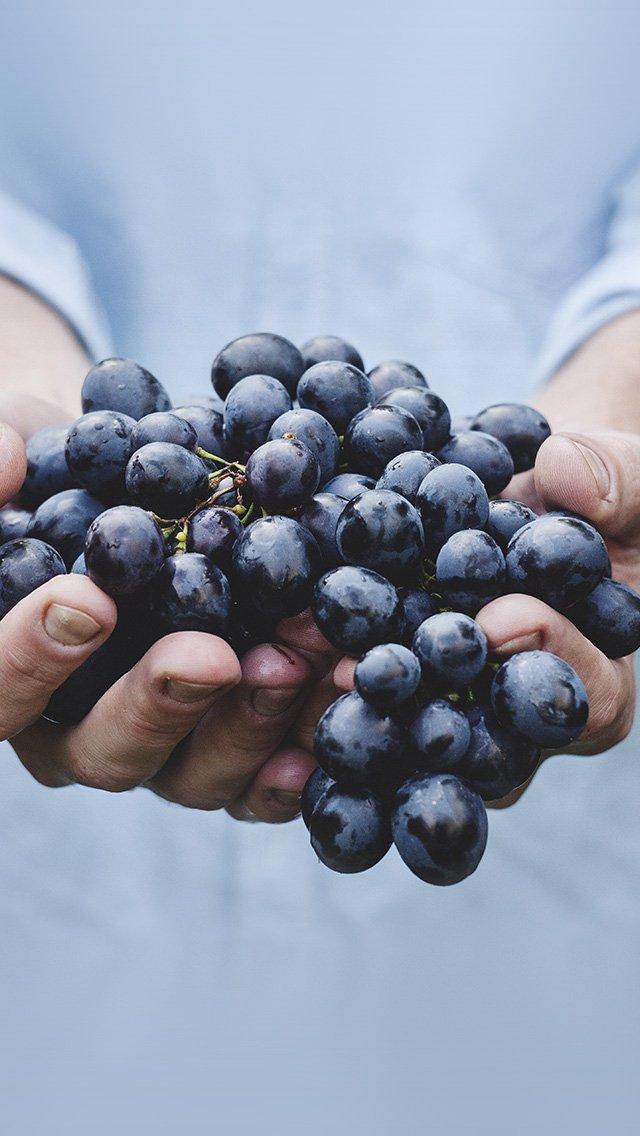 Подборка лучших обоев: витамины