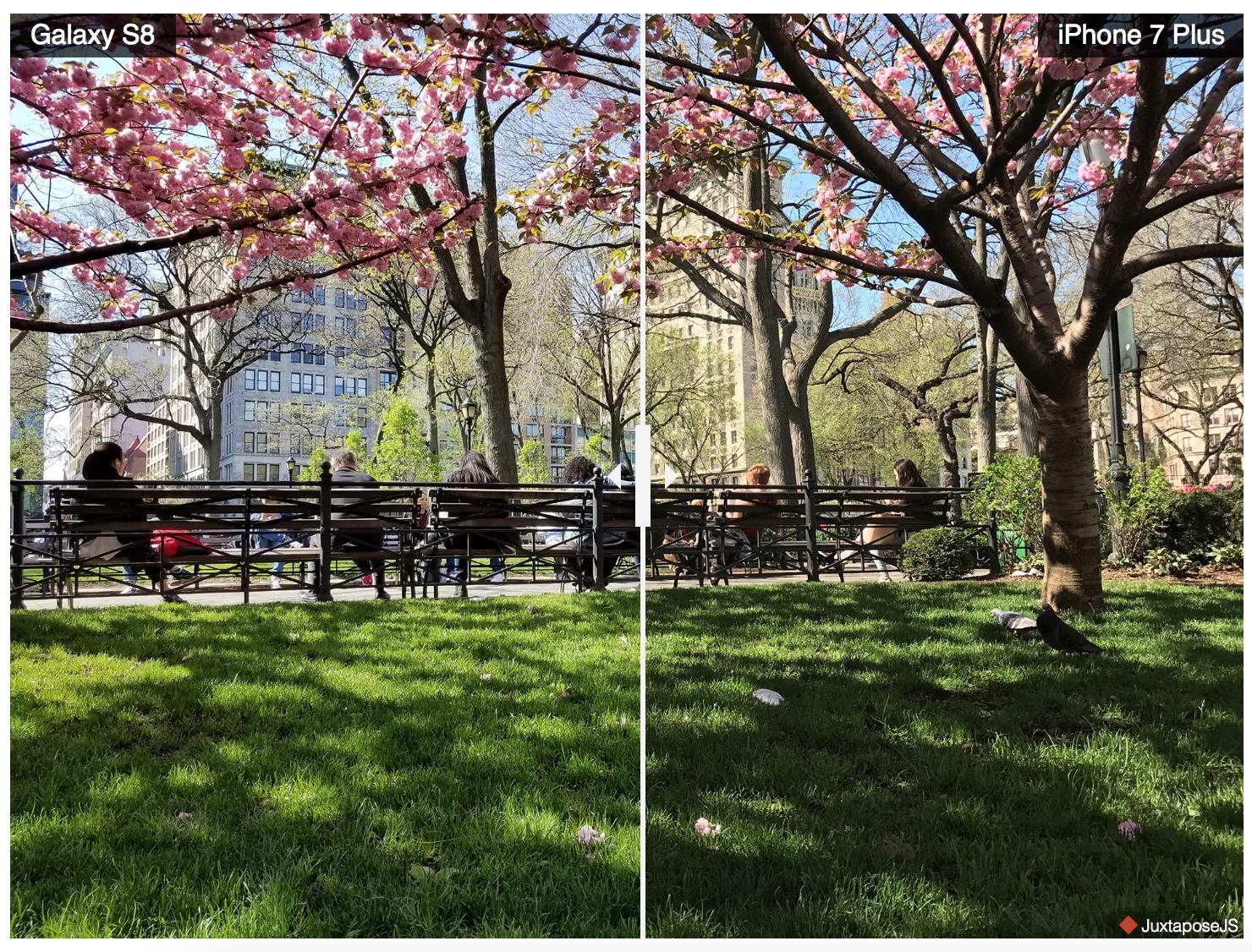 iPhone 7 Plus против Galaxy S8: чья камера оказалась лучше?