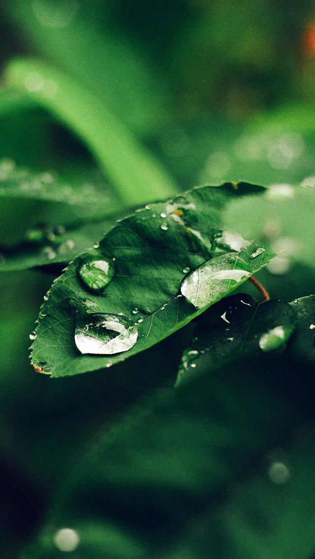 Подборка лучших обоев: дождь