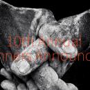 Названы победители iPhone Photography Awards 2017