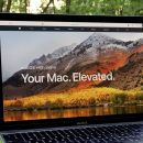 Что нового в пятой бета-версии macOS High Sierra