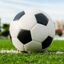 ПФЛ аннулировала матч «Иртыша» и «Смены» из-за игроков-ставочников