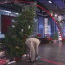На Шакила О'Нила упала рождественская ёлка